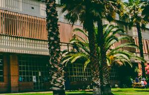Carta Académicos Facultad: Urgencia y voluntad de diálogo